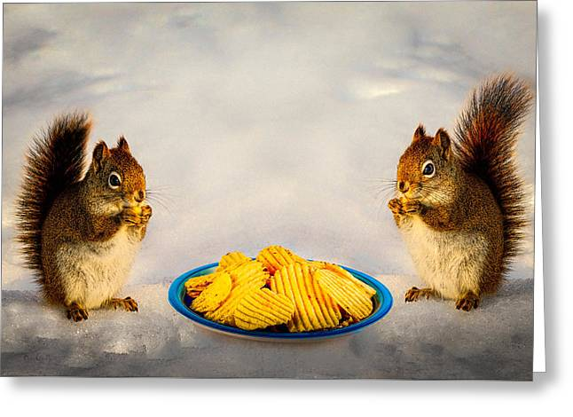 Junk Greeting Cards - When you lose your nuts there is always chips Greeting Card by Bob Orsillo
