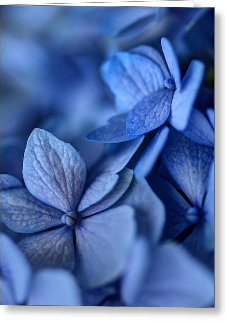 Blue Mood Greeting Cards - When Youre Feeling Blue Greeting Card by Nikolyn McDonald