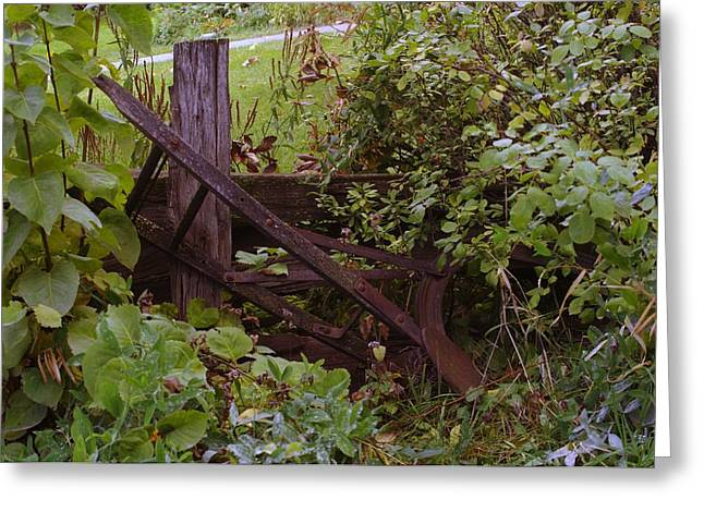 Old Stuff Greeting Cards - Where An Old Plow Rests  Greeting Card by Jeff  Swan