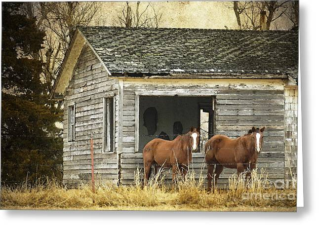 Old House Photographs Digital Greeting Cards - Where Are the People Greeting Card by Betty LaRue