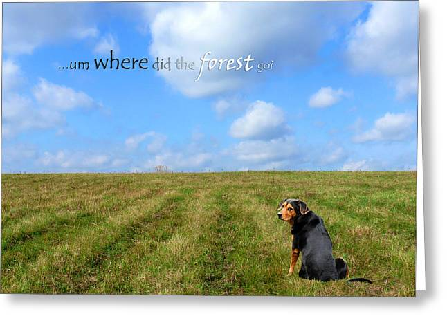 Puppies Digital Art Greeting Cards - Where Did The Forest Go Greeting Card by Christina Rollo