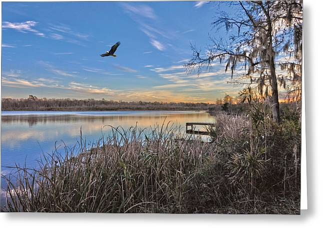 Where Eagles Fly Greeting Card by Donnie Smith