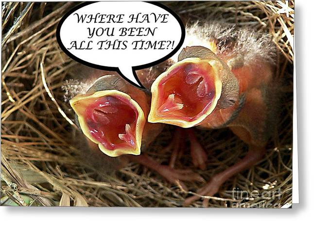 Baby Bird Greeting Cards - WHERE HAVE YOU BEEN Greeting Card Greeting Card by Al Powell Photography USA