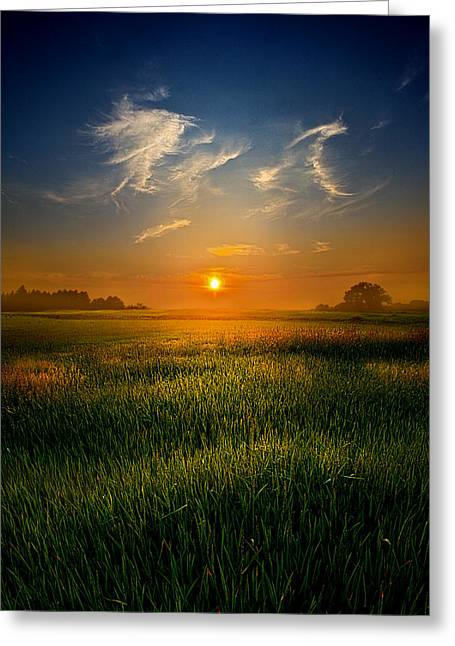 Field. Cloud Greeting Cards - Where I Belong Greeting Card by Phil Koch