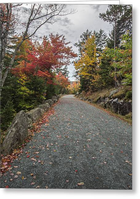 Maine Landscape Greeting Cards - Where I Go Greeting Card by Jon Glaser