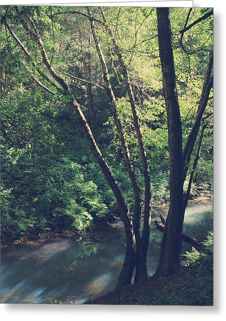 Fort River Greeting Cards - Where Its Shady Greeting Card by Laurie Search