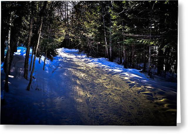 Snowy Roads Photographs Greeting Cards - Where Snowmobiles Go Greeting Card by David Patterson