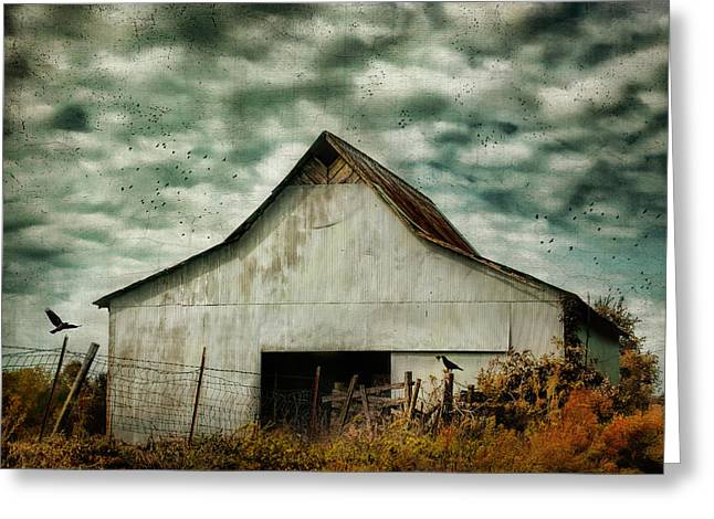 Tennessee Barn Greeting Cards - Where The Crows Roost In Autumn Greeting Card by Jai Johnson