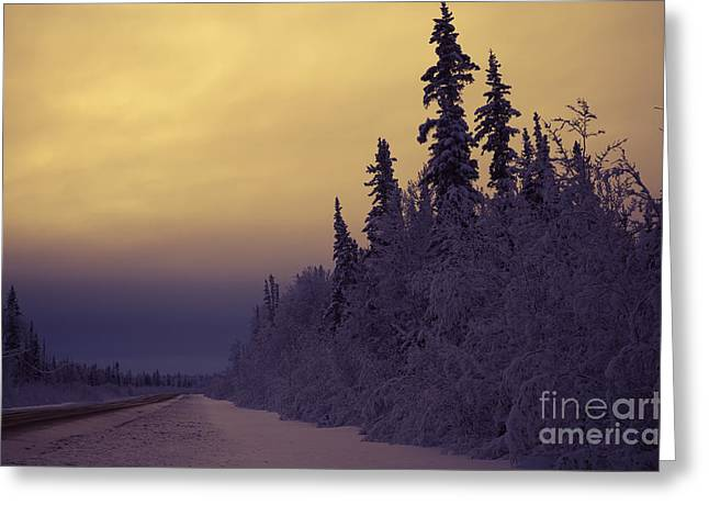 Winter Scene Digital Art Greeting Cards - Where the road goes Greeting Card by Lisa Killins
