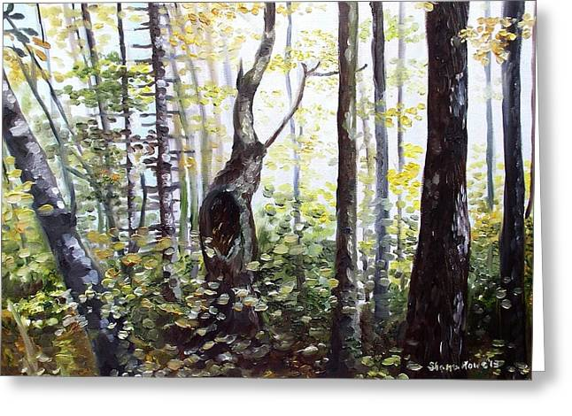 Maine Spring Paintings Greeting Cards - Where Time Stops Greeting Card by Shana Rowe