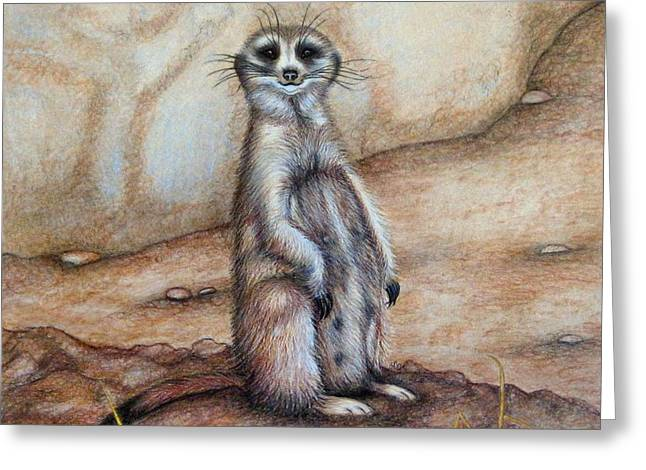 Meerkat Drawings Greeting Cards - Whered everybody go ? Greeting Card by Jo Prevost