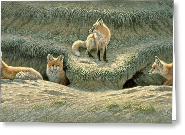 Red Foxes Greeting Cards - Wheres Mom-Fox Pups Greeting Card by Paul Krapf