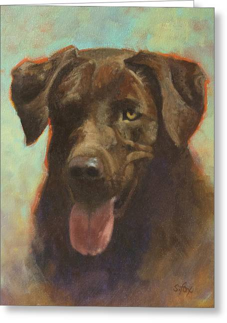 Chocolate Lab Greeting Cards - Wheres the Ball Greeting Card by Susan Fox