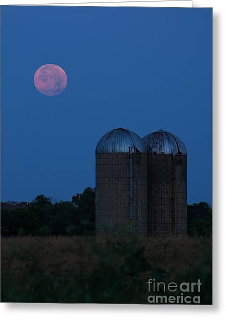 Super Moon Greeting Cards - While Everyone Sleeps Greeting Card by Lisa Holmgreen