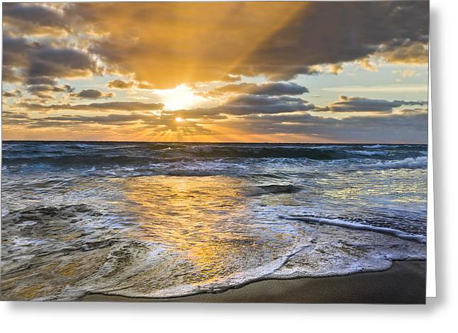 Jupiter Island Greeting Cards - Whipped Cream Greeting Card by Debra and Dave Vanderlaan