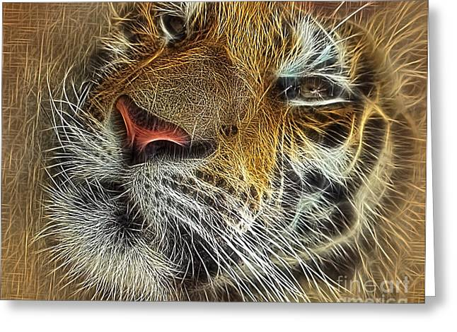 The Tiger Greeting Cards - Whiskers of the Tiger Greeting Card by Kaye Menner