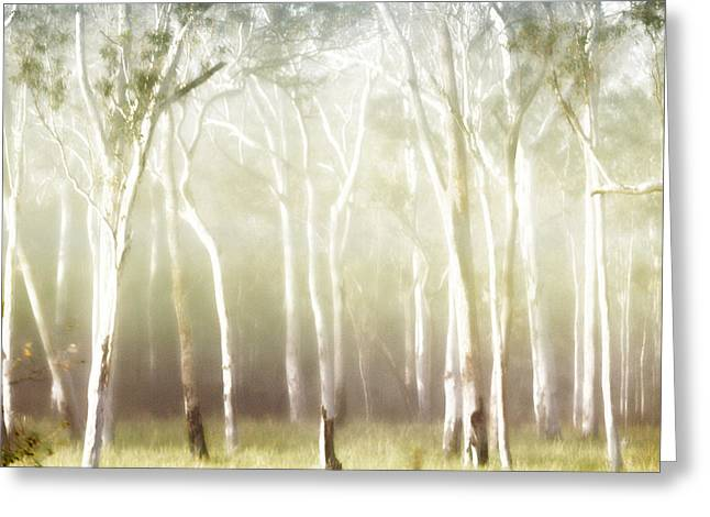 Whisper The Trees Greeting Card by Holly Kempe