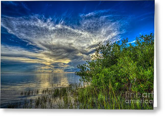 Gulf Of Mexico Scenes Greeting Cards - Whisper Wind Greeting Card by Marvin Spates