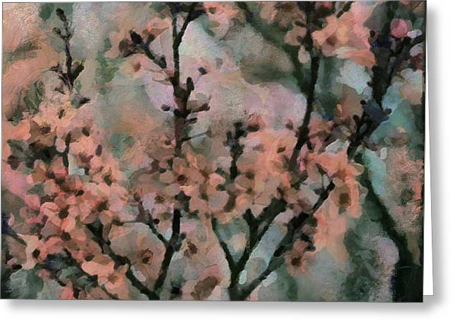 whispering cherry blossoms Greeting Card by Janice MacLellan