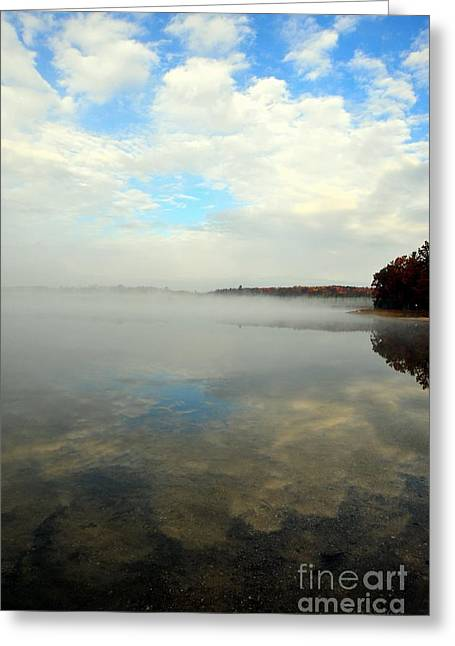 Northern Greeting Cards - Whispering Skies Greeting Card by Terri Gostola