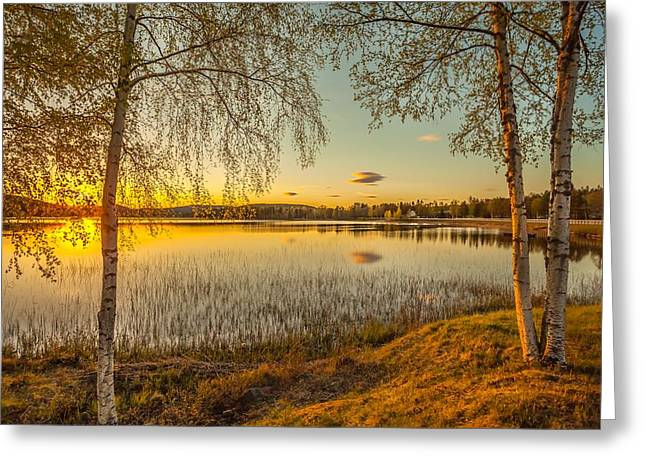 Sunset In Norway Greeting Cards - Whispering Wind Greeting Card by Rose-Maries Pictures