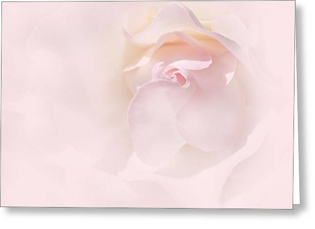 Abstract Rose Abstract Greeting Cards - Whispers of a Pink Rose Greeting Card by Jennie Marie Schell