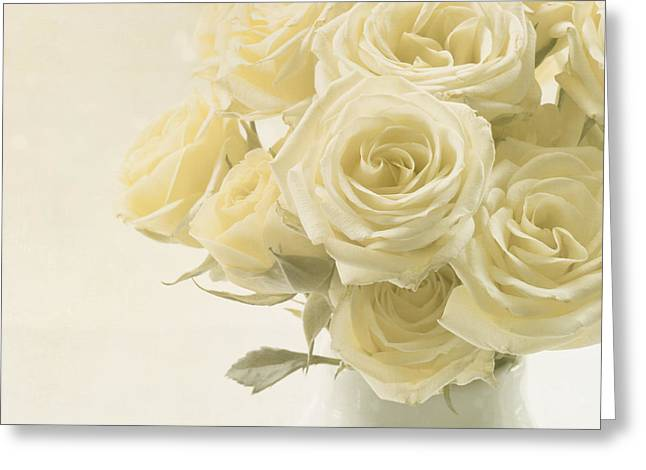 Ivory Roses Greeting Cards - Whispers of Chiffon - Roses Greeting Card by Kim Hojnacki