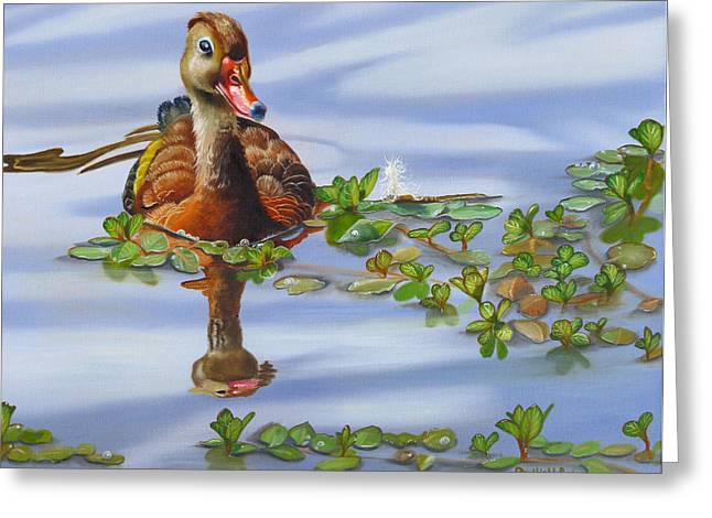 Wadingbird Greeting Cards - Whistling Dixie Greeting Card by Phyllis Beiser
