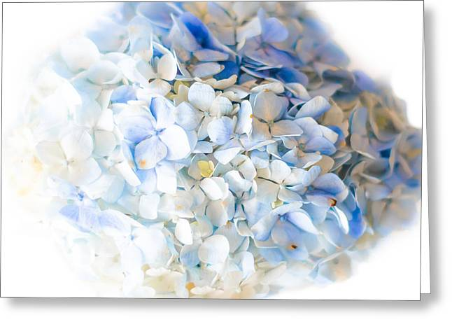 Lighter Greeting Cards - White and Blue Greeting Card by Shelby  Young