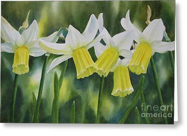 White Paintings Greeting Cards - White and Yellow Daffodils Greeting Card by Sharon Freeman