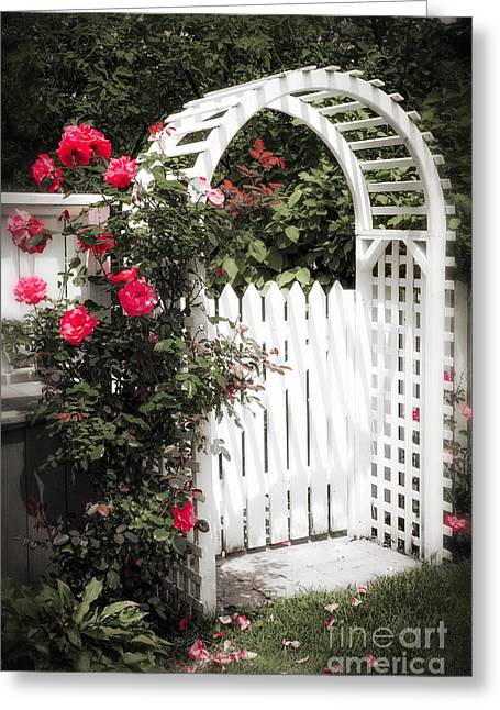 Red Flowers Greeting Cards - White arbor with red roses Greeting Card by Elena Elisseeva