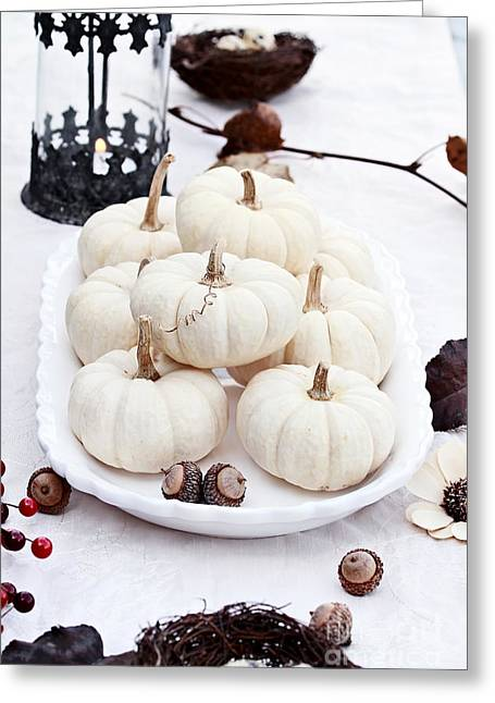 Mini Pumpkins Greeting Cards - White Autumn Table Setting Greeting Card by Stephanie Frey
