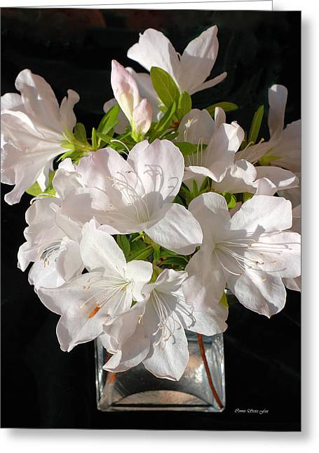 White Azalea Bouquet In Glass Vase Greeting Card by Connie Fox