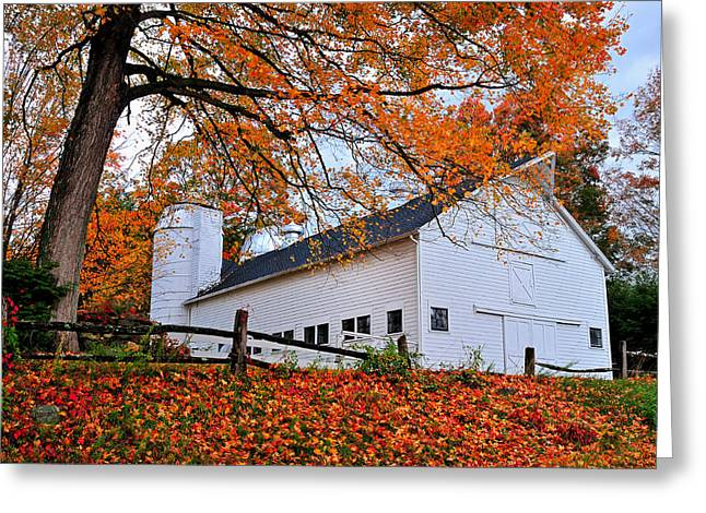 Old Barns Greeting Cards - White Barn and Silo Greeting Card by Thomas Schoeller