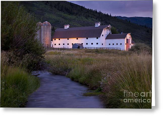 White Barns Greeting Cards - White Barn Greeting Card by Brian Jannsen