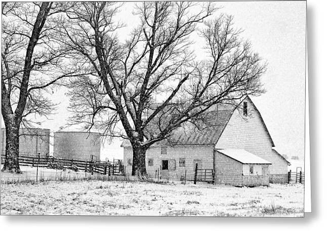 Snow On Barn Greeting Cards - White Barn in Snow Greeting Card by Nikolyn McDonald
