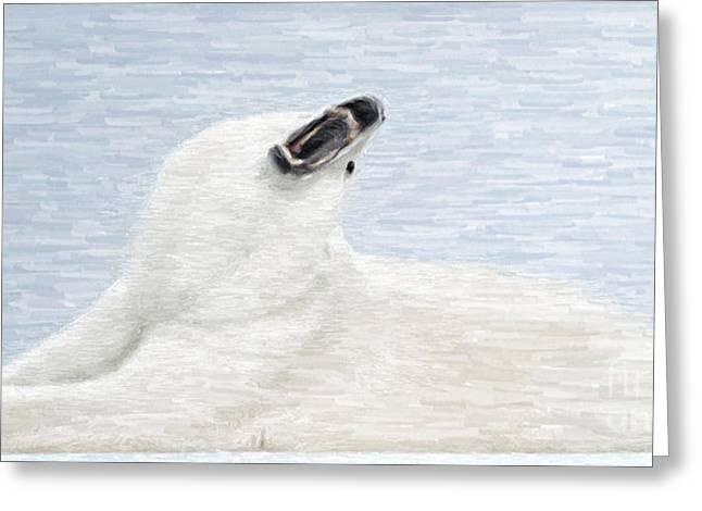 Kodiak Digital Art Greeting Cards - White Bear Greeting Card by Aleksey Tugolukov