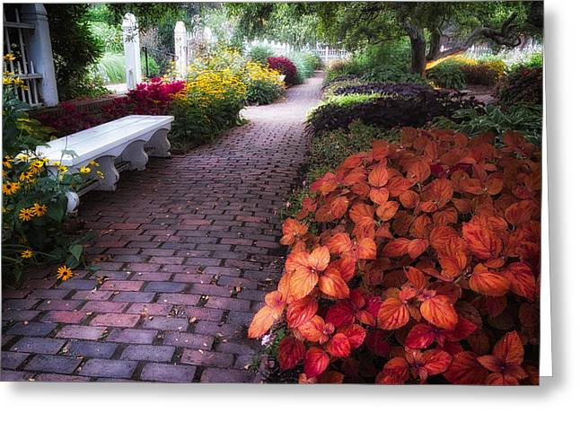 Prescott Greeting Cards - White Bench Prescott Park  Greeting Card by Jeff Sinon