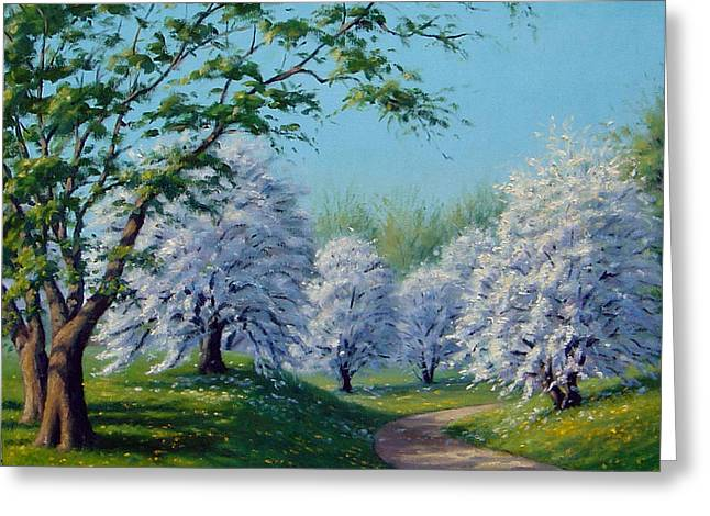 Breezy Greeting Cards - White Blossoms Greeting Card by Rick Hansen