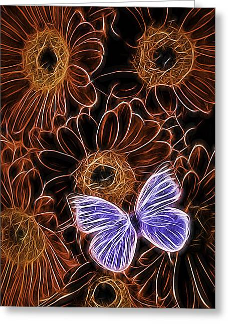 Beauty Greeting Cards - White Butterfly On Orange Daisies  Greeting Card by Garry Gay