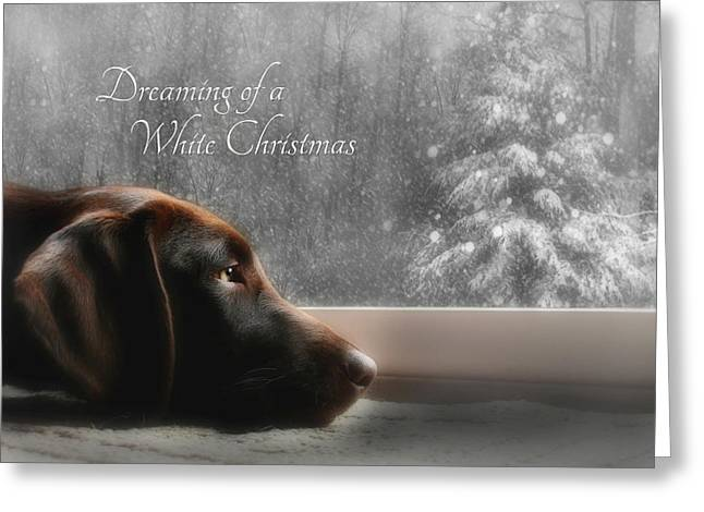 Chocolate Lab Greeting Cards - White Christmas Greeting Card by Lori Deiter
