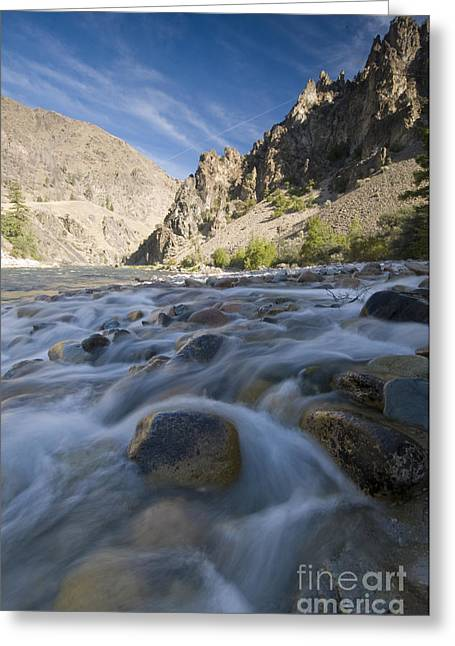 Idaho Scenery Greeting Cards - White Creek And Middle Fork Salmon River Greeting Card by William H. Mullins