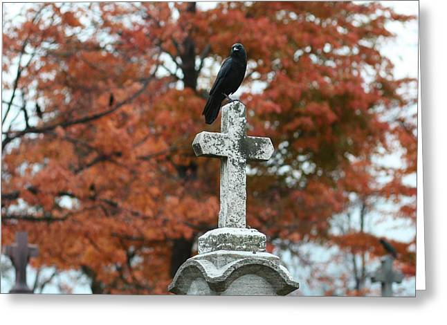 Crows On Tombstones Greeting Cards - White Cross Greeting Card by Gothicolors Donna Snyder