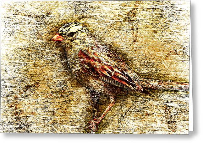 Bible Digital Art Greeting Cards - White Crowned Sparrow Greeting Card by Gary Bodnar