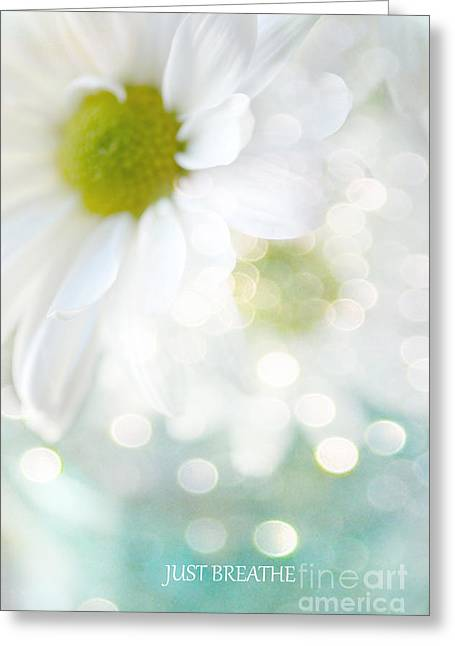 Floral Photos Greeting Cards - Dreamy White Daisies Floral Art - Ethereal Dreamy Shabby Chic White Daisies - Just Breathe Greeting Card by Kathy Fornal