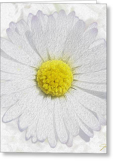 Flower Still Life Mixed Media Greeting Cards - White Daisy on White Greeting Card by Jon Neidert