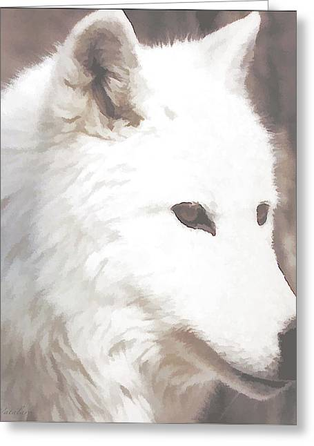 Beautiful Face Wolf Greeting Cards - White Dazzle Wolf Greeting Card by Debra     Vatalaro