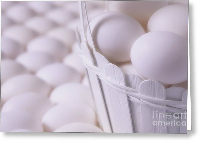 Chicken On Eggs Greeting Cards - White eggs in white basket Greeting Card by Jim Corwin