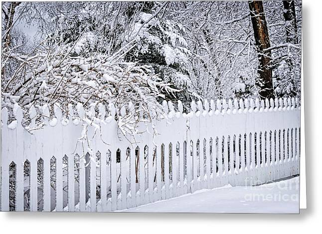 Snowy Trees Greeting Cards - White fence with winter trees Greeting Card by Elena Elisseeva