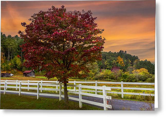 Tennessee Farm Greeting Cards - White Fences Greeting Card by Debra and Dave Vanderlaan